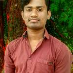 Avi Madavi Profile Picture